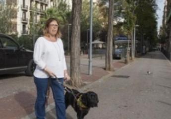 TMB señaliza las paradas de metro y autobús de Barcelona con etiquetas inteligentes